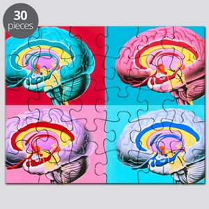 Artworks showing the limbic system of the b Puzzle